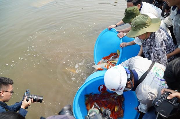 Chuyên gia Nhật thả cá Koi xuống sông Tô Lịch để chứng minh chất lượng nước sau khi xử lý - Ảnh 7.