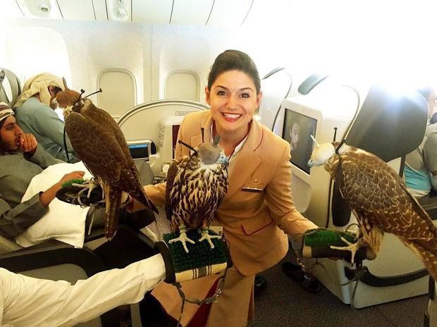 """Dubai giàu có đến mức nào: Đây là những điều sẽ khiến du khách quốc tế """"tá hỏa"""" khi lần đầu đặt chân đến đây! - Ảnh 14."""