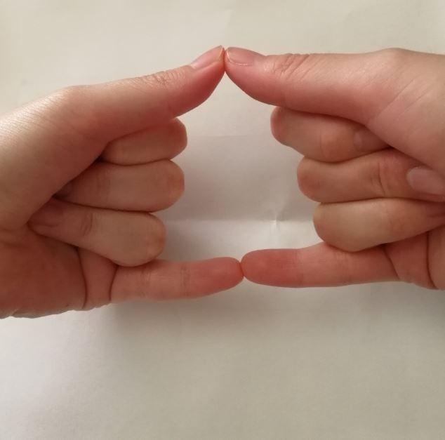 Cư dân mạng Nhật Bản nô nức tạo hình emoji đống phân bằng tay để chúc nhau may mắn - Ảnh 5.