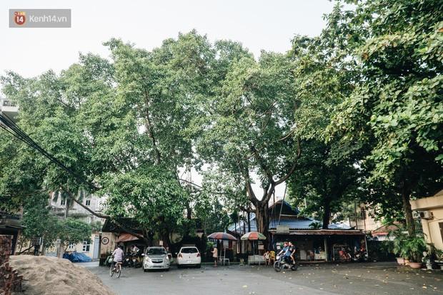 Ngôi làng Hà Nội có những tục lạ: Con gái xinh đẹp, giỏi giang nhưng không ai dám cưới - Ảnh 4.