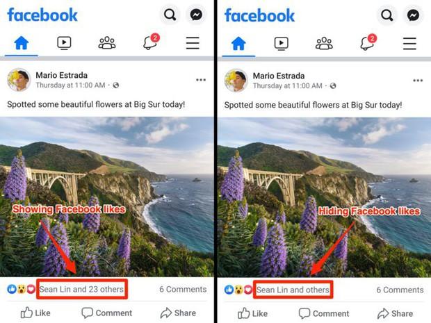 facebook - photo 1 15698083168451482754875 - Hình ảnh đầu tiên về Facebook bỏ hiển thị số Like: Không còn khoe mẽ, chỉ hiện vài cái tên trơ trọi