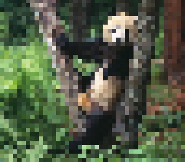 Sự thật đáng buồn về 22 bức tranh của các loài động vật có số lượng pixel tương ứng với số cá thể còn sống - Ảnh 16.