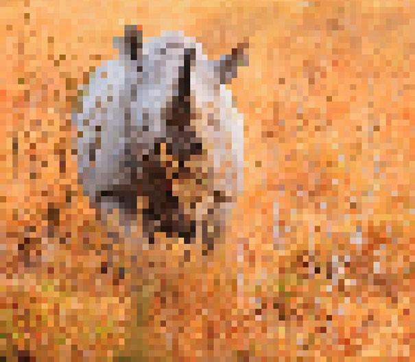 Sự thật đáng buồn về 22 bức tranh của các loài động vật có số lượng pixel tương ứng với số cá thể còn sống - Ảnh 7.