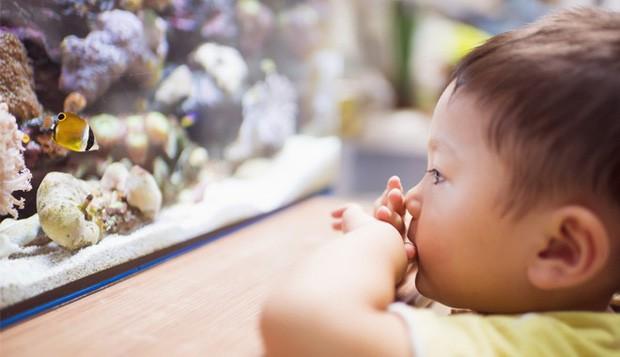 Bài phát biểu đặc biệt của hiệu trưởng ở Mỹ trước thềm năm học mới, cha mẹ Việt đọc xong gật gù tâm đắc - Ảnh 2.