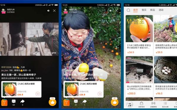 Không phải KOL, nông dân trồng rau nuôi cá mới là cái tên vàng trong làng livestream ở Trung Quốc, phát trực tiếp 1 lần bán hết 1.000 tấn cam trong 13 ngày - Ảnh 3.