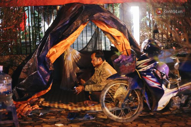 Ảnh: Dựng lều, thức trắng đêm trông đào, quất lộ thiên tại Hà Nội - Ảnh 3.