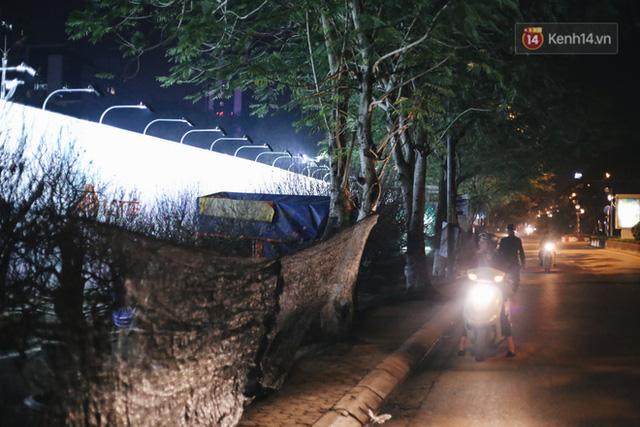 Ảnh: Dựng lều, thức trắng đêm trông đào, quất lộ thiên tại Hà Nội - Ảnh 10.
