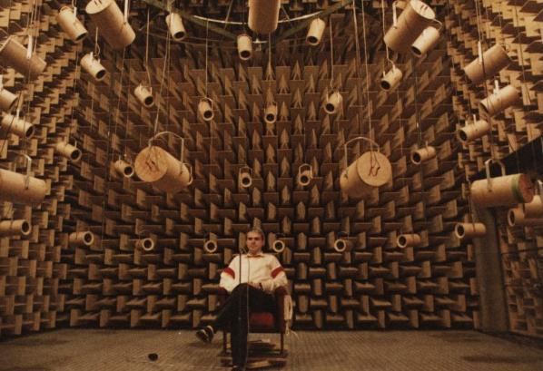 [Vietsub] Bên trong căn phòng yên tĩnh nhất thế giới, bạn có thể nghe thấy cả tiếng máu chảy trên đầu mình - Ảnh 5.