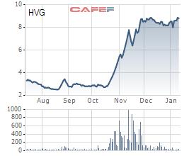 Công ty con của Thaco đã sở hữu hơn 24% vốn tại Thuỷ sản Hùng Vương  - Ảnh 1.