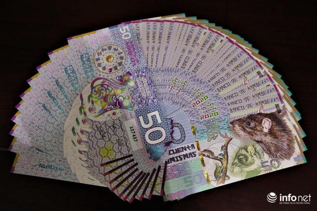 Độc đáo tiền lì xì in hình chuột hút khách trước dịp Tết Nguyên đán Canh Tý - Ảnh 4.