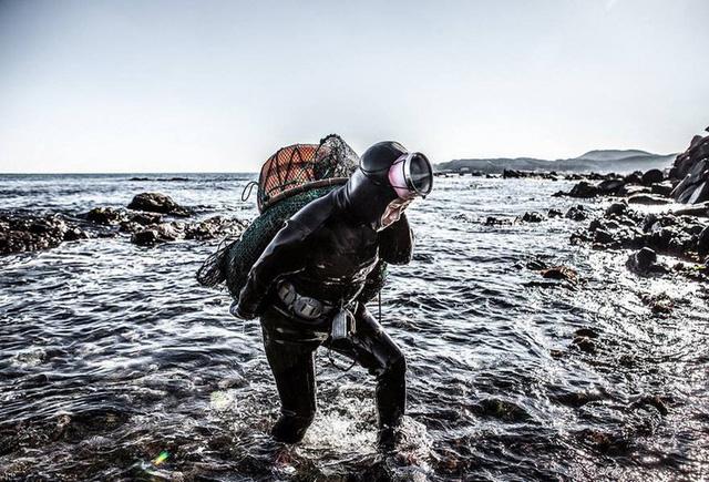 Câu chuyện cực ngầu về những nàng tiên cá 70 tuổi cuối cùng trên đảo Jeju - Ảnh 2.