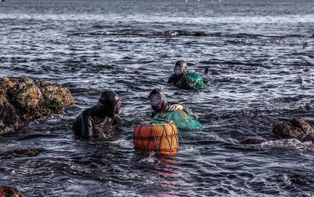 Câu chuyện cực ngầu về những nàng tiên cá 70 tuổi cuối cùng trên đảo Jeju - Ảnh 3.
