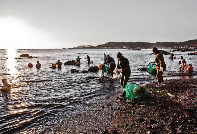 Câu chuyện cực ngầu về những nàng tiên cá 70 tuổi cuối cùng trên đảo Jeju - Ảnh 9.
