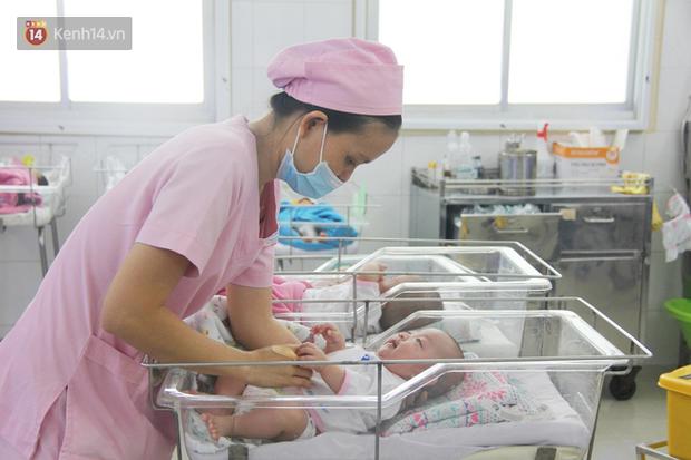 Mẹ đẻ ở bệnh viện Từ Dũ rồi bỏ đi biệt tích, 3 bé gái 4 tháng tuổi phải chuyển đến nơi nuôi trẻ mồ côi trước Tết - Ảnh 1.