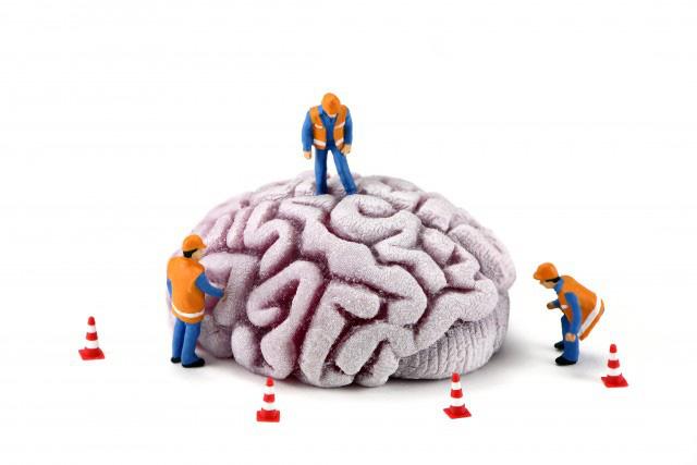 Làm sao để tập luyện não bộ tiết ra nhiều hooc-môn hạnh phúc hơn? - Ảnh 7.