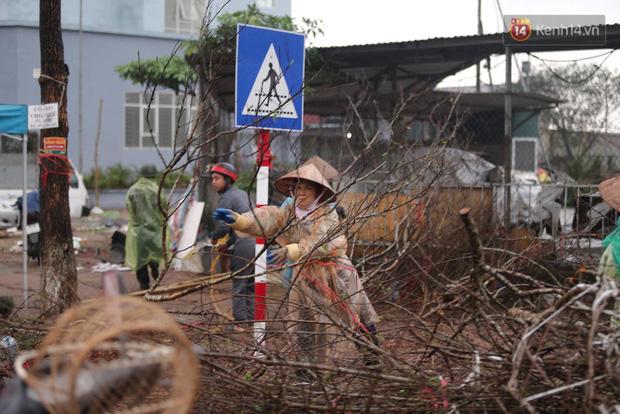 Hà Nội: Mưa gió chiều 30 Tết lại bị ép giá, người buôn đào quất quyết vặt trụi hoa quả và bỏ lại núi rác - Ảnh 12.