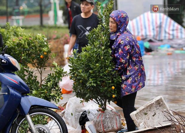 Hà Nội: Mưa gió chiều 30 Tết lại bị ép giá, người buôn đào quất quyết vặt trụi hoa quả và bỏ lại núi rác - Ảnh 6.