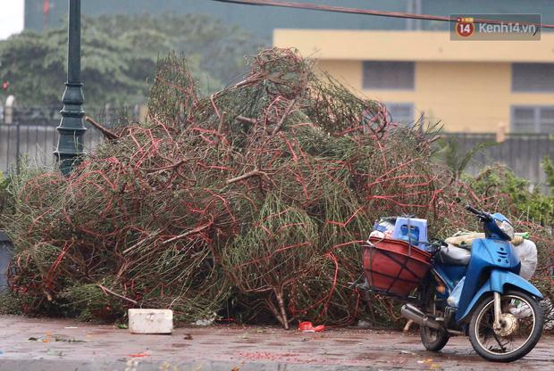 Hà Nội: Mưa gió chiều 30 Tết lại bị ép giá, người buôn đào quất quyết vặt trụi hoa quả và bỏ lại núi rác - Ảnh 10.