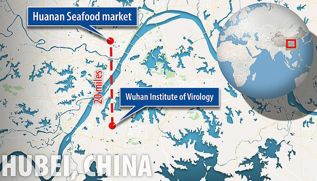 Virus Vũ Hán bị nghi là sản phẩm của phòng thí nghiệm, có liên quan đến chương trình chiến tranh sinh học của Trung Quốc - Ảnh 1.