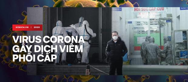 Trụ trì chùa Ba Vàng tổ chức hóa giải virus corona đã bị xử lý - Ảnh 3.