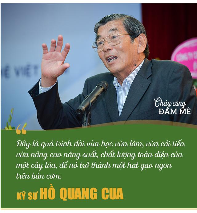 Kỹ sư Hồ Quang Cua - Cha đẻ của giống gạo ngon nhất thế giới: Ban đầu mình tính làm chơi thôi! - Ảnh 3.