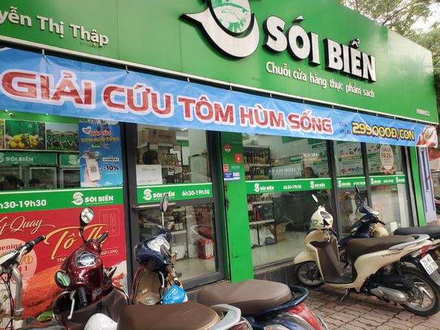 """Giải cứu tôm hùm ở Hà Nội: Hàng đồng giá 299.000 đồng/con """"cháy"""" hàng  - Ảnh 2."""