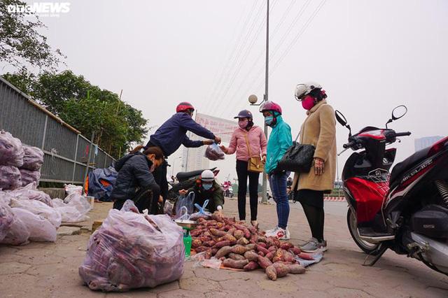 Khoai lang ngổn ngang trên vỉa hè Hà Nội, chờ khách giải cứu  - Ảnh 2.