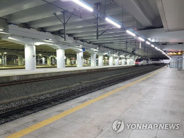 Hàn Quốc: Xác nhận thêm 115 ca nhiễm mới virus corona, tổng số người nhiễm gần 1300, 12 người tử vong - Ảnh 2.