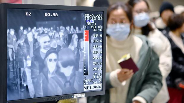 Nhật Bản công bố thêm 22 trường hợp dương tính với virus corona, tổng cộng 186 người đã lây nhiễm trong đất liền - Ảnh 1.