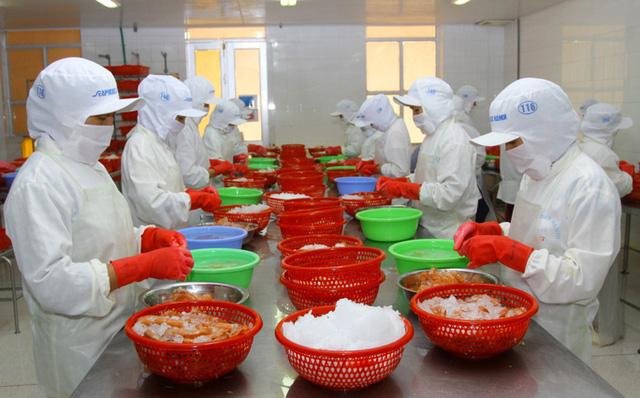 Châu Âu đóng cửa biên giới, xuất nhập khẩu của Việt Nam ảnh hưởng thế nào? - Ảnh 1.