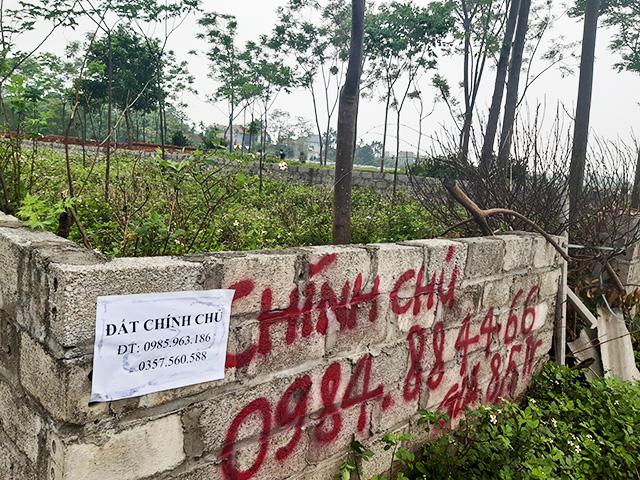 Đất Thạch Thất, Hà Nội lên cơn sốt ảo, giá tăng 3 lần sau 20 ngày - Ảnh 5.