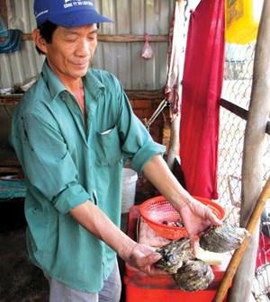 Ăn đồ biển đảo Rùa doanhnhansaigon
