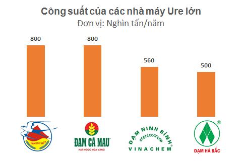 Đạm Cà Mau và Đạm Phú Mỹ thuộc sở hữu của PVN trong khi Đạm Ninh Bình và Đạm Hà Bắc thuộc sở hữu của Vinachem