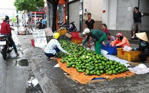 Bơ Việt vào mua thu hoạch rộ được bày bán khắp các lề đường với giá rẻ.