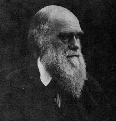 Chân dung Charles Darwin, một tác phẩm khác của Julia Margaret Cameron.