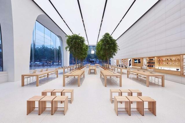 Apple sử dụng những chiếc bàn làm bằng gỗ cây tùng để trưng bày Apple Watch.