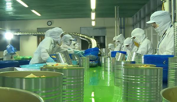 Nhà máy West Food hiện có hai dây chuyền đóng hộp trái cây xuất khẩu.
