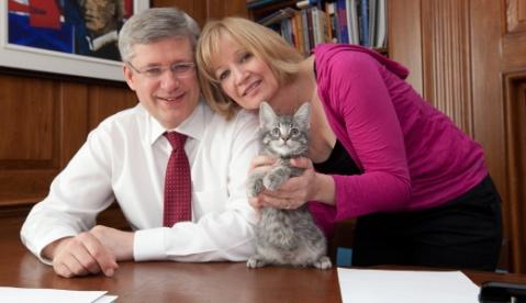 Gia đình Cựu Thủ tướng Stephen Harper nổi tiếng yêu mèo
