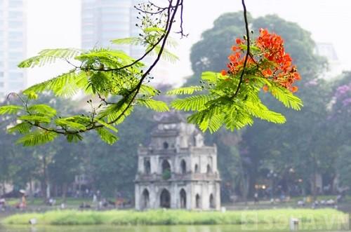 Tháp Rùa là biểu tượng đẹp của Hà Nội (Ảnh: Internet)