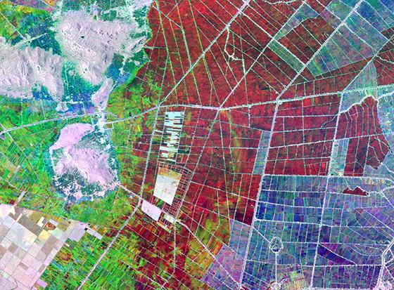 Ảnh chụp vùng nông nghiệp của An Giang từ vệ tinh từ NASA, trong đó những vùng tối màu đen sẫm là vùng đang ngập úng nước cần được xử lý - Ảnh: NASA