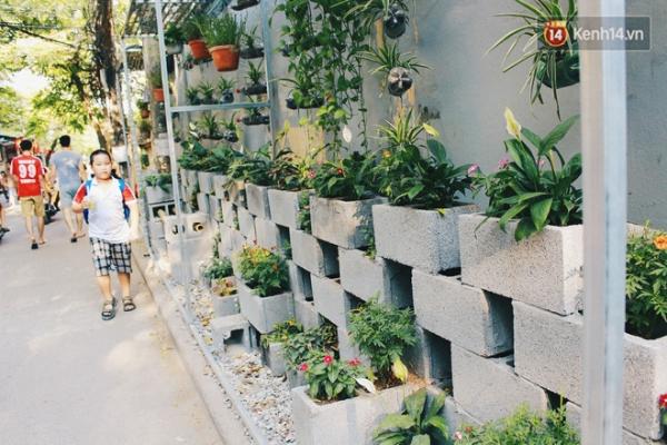 Người dân gần đây, ai nấy đều rất quan tâm, bảo vệ vườn hoa do nhóm của Tùng làm ra.