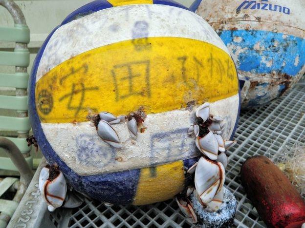 Vật dụng của một nạn nhân trận sóng thần Nhật Bản năm 2011 được tìm thấy ở bờ biển Hawaii năm 2013 (Ảnh: Noni Sanford)