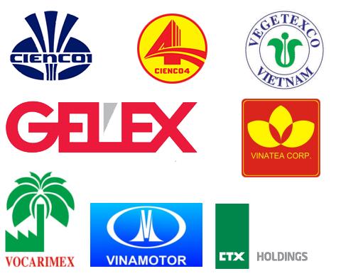Một số tổng công ty lớn đã bán cổ phần chi phối cho tư nhân.