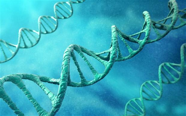 Các biến thể gen liên quan tới trí thông minh cũng sẽ liên quan tới sức khỏe tốt.