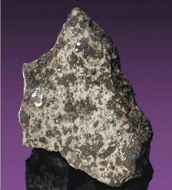 Đây không phải là một hòn đá bình thường. Hòn đá này đã giết chết một con bò. Vì thành tích này viên đá sẽ có giá vào khoảng 150 triệu đồng trong đợt đấu giá.