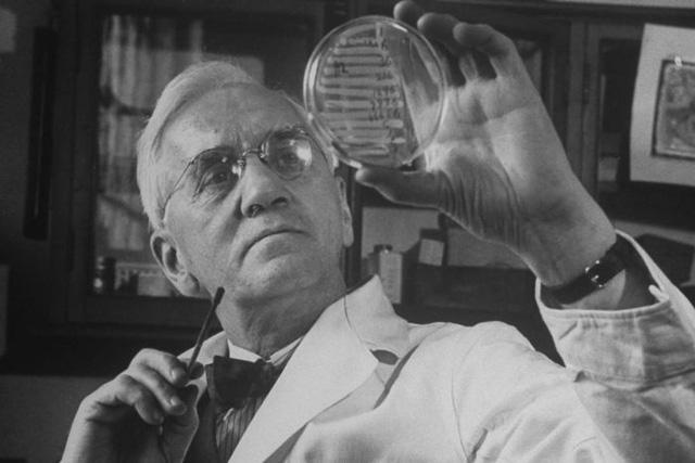 Alexander Fleming, người đã tình cờ phát minh ra penicillin