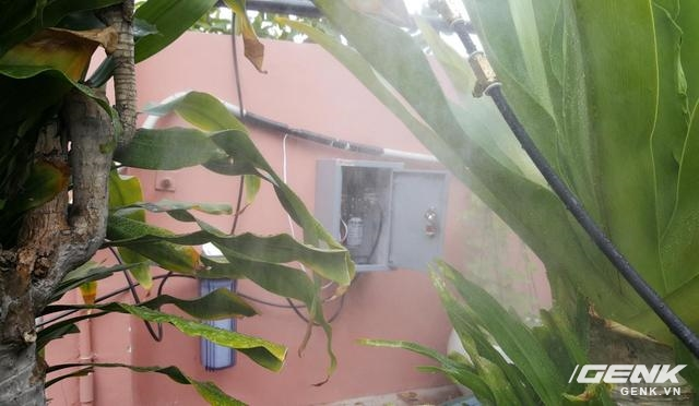 Không chỉ tưới rau mà hệ thống tưới của Roof Garden VN còn sử dụng được để tưới phong lan, tưới cây cảnh