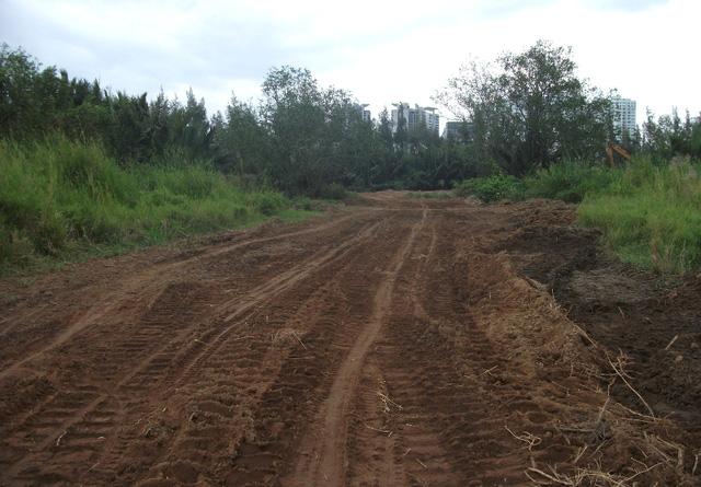 Một con đường được làm tạm để xe chở vật liệu vào bên trong công trình. Đường thì có, nhưng quá trình thi công chỉ lác đác vài ba ngay rồi ngưng.