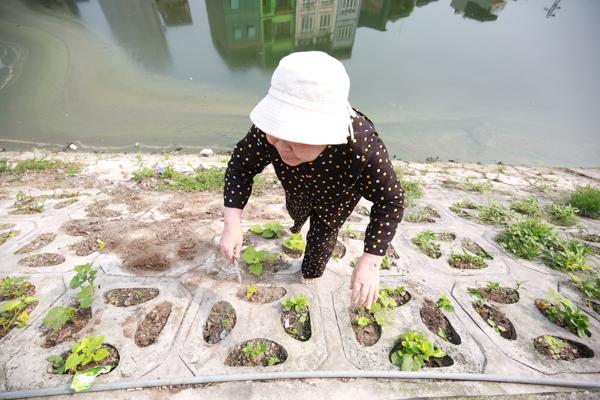 Điều đặc biệt là những kè nhỏ tại bờ hồ được người dân tự sáng tạo để tránh tránh đất rơi xuống lòng hồ.