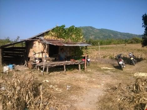 Ông Pi năng Xuân ở thôn Suối Lở, xã Phước Thành, huyện Bác Ái dựng chòi trong lòng hồ Sông Sắt để làm rẫy.